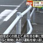 山本果容疑者の顔画像やプロフィール、余罪を調査【愛知県豊橋市のあおり運転の末車を破壊される事件】