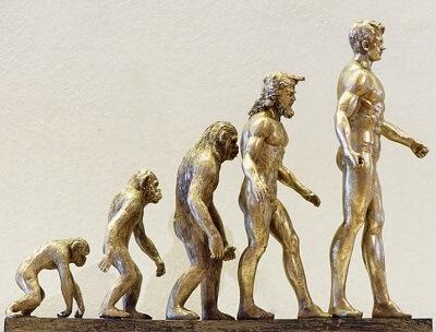 変化や進化